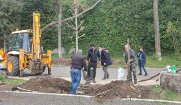 Ιωάννινα: Φυτεύονται νέα δέντρα στην παραλίμνιο περιοχή