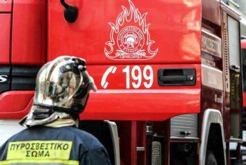 Άρτα: Πυροσβέστες έσωσαν άνδρα που έπαθε αλλεργικό σοκ