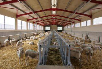 Η Φάρμα ΗΠΕΙΡΟΣ αρωγός στην ανάπτυξη της ελληνικής κτηνοτροφίας