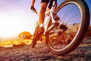 Γιάννενα: Κυκλοφορούσε αμέριμνος με το ποδήλατο αλλά δεν πέρασε απαρατήρητος από την αστυνομία