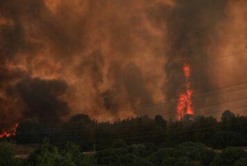 Ομολόγησε ο 14χρονος ότι ευθύνεται για 9 πυρκαγιές