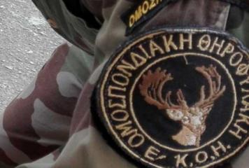 Συνελήφθη κυνηγός για λαθροθηρία στο Ζαγόρι